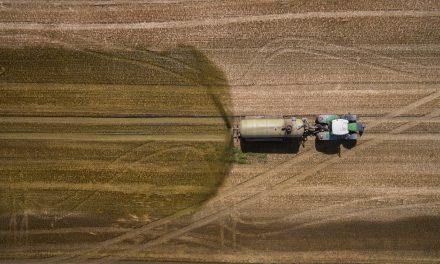 So ein Mist! – Massentierhaltung gefährdet Trinkwasser