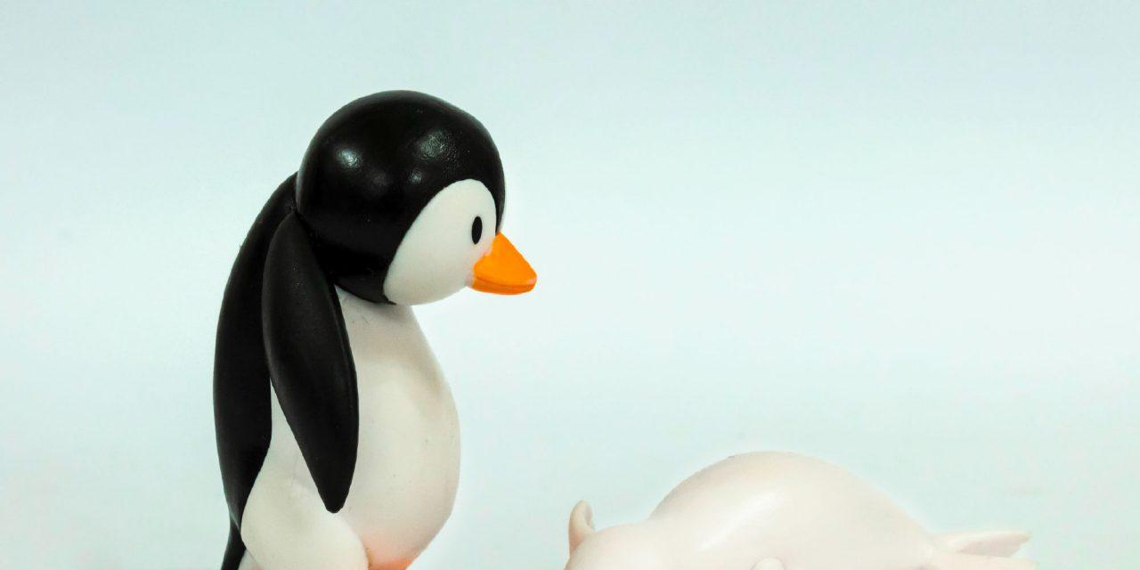 Pinguin-Museum – Kuriose Pinguin-Sammlung in Cuxhaven