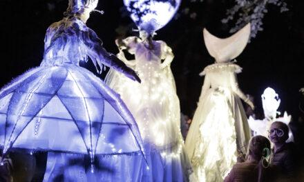 Traumhaftes Farbspiel – das Lichterspektakel begeistert tausende Besucher