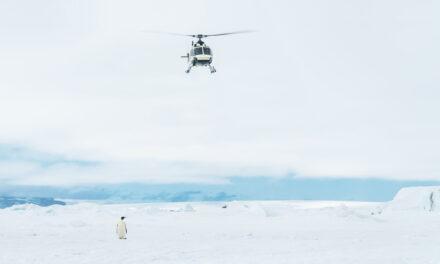 Projekt Antarktis: Von Bremerhaven bis ans Ende der Welt