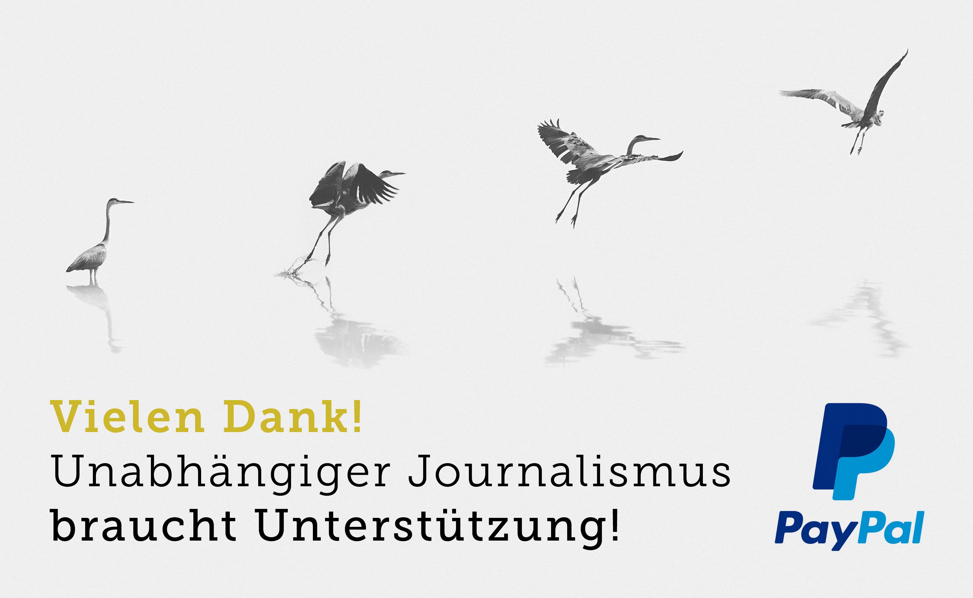 Unabhängiger Journalismus braucht Unterstützung!