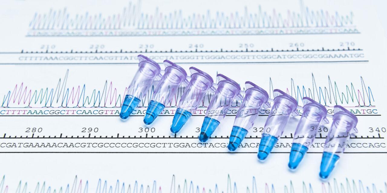 WHO relativiert PCR-Test-Ergebnisse