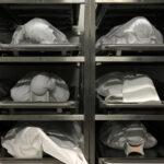 Generalstaatsanwalt Stuttgart will Obduktionen nach Impfungen verhindern