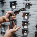 Die Bewaffnung der Bundesbehörden