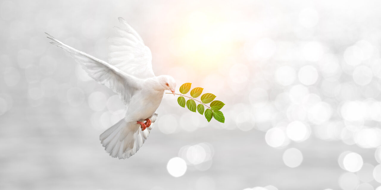 Für den Frieden-Konferenz 17. + 18. Juli 2021