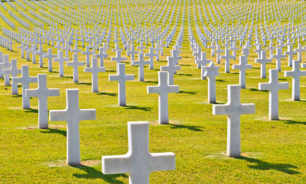 Der Friedhof der Impflinge